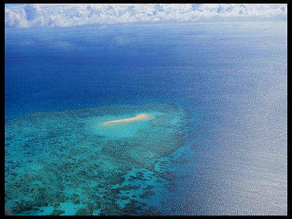 Reef1