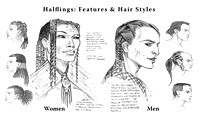 Halflings: Features and Hair Styles